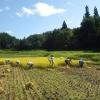 9月26日、稲刈りとくいがけ体験会